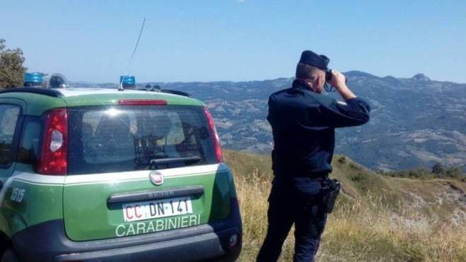 I carabinieri della Forestale di Morciano hanno confiscato le due costose biciclette