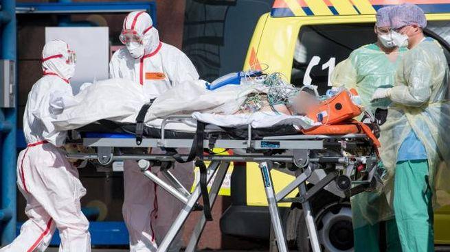 Paziente trasportato ieri in aereo dalla Lombardia a Lipsia (Ansa)