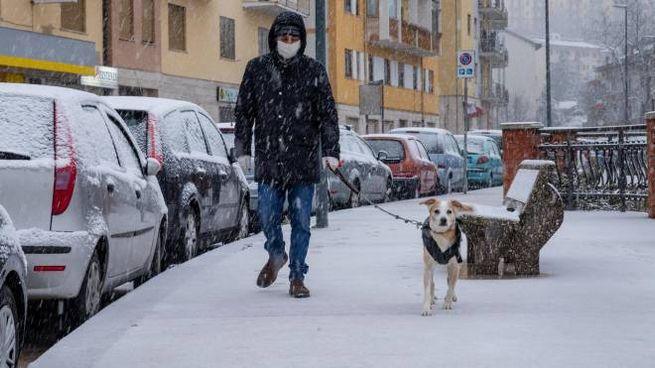 Potenza, un uomo con il cane sotto la fitta nevicata (Ansa)