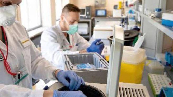 Coronavirus, un laboratorio analisi (foto d'archivio)