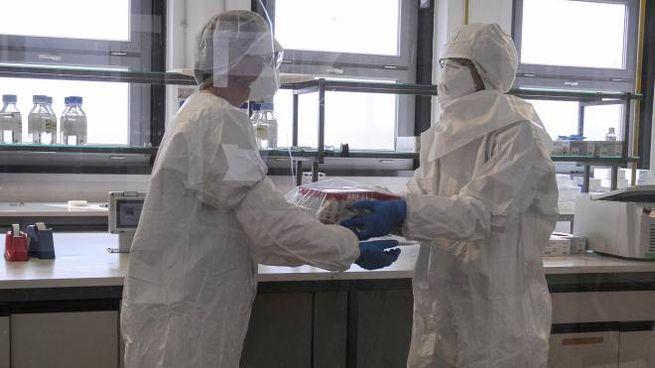 The laboratory where Coronavirus Covid-19 swab tests are performed in Brescia during the national emergency blockade of the Coronavirus Covid-19 pandemic in Italy, 03 April 2020. ANSA/FILIPPO VENEZIA