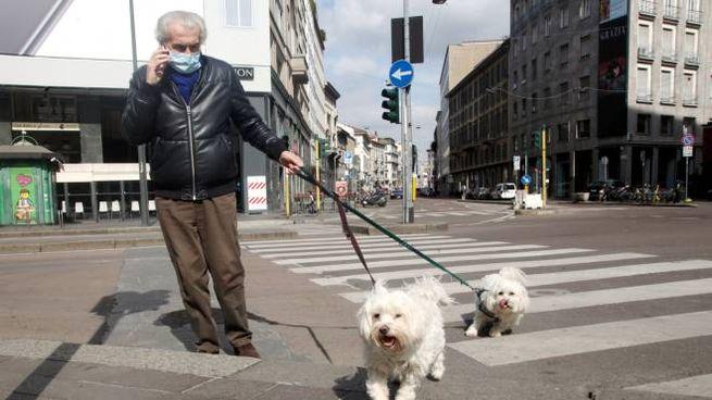 Una persona in mascherina porta a spasso i cani