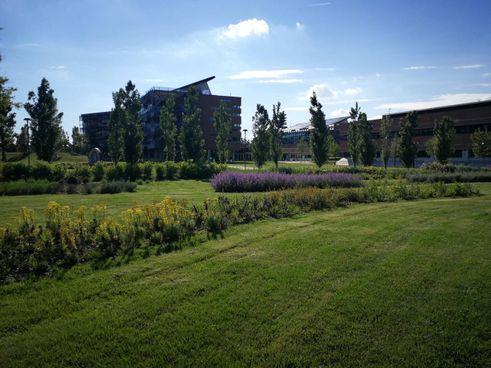 L'headquarter di Crédit Agricole in Italia: una sede ecosostenibile all'interno di un grande parco