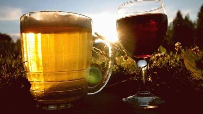 differenza tra birra e vino