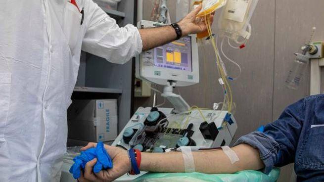 Raccolta di plasma iperimmune per curare il Coronavirus (ImagoE)
