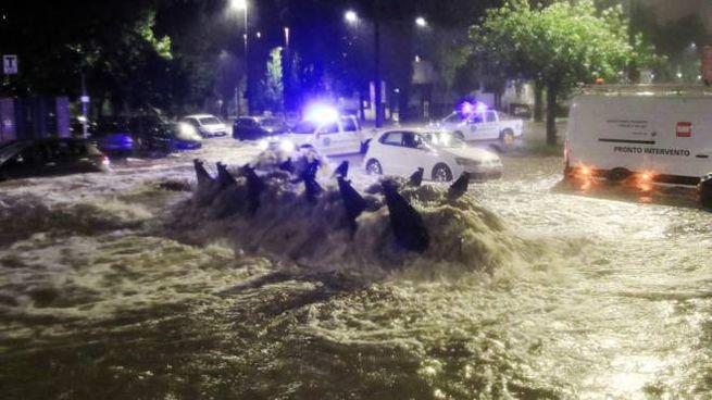Maltempo, l'esondazione del Seveso durante l'ultimo temporale a Milano (Ansa)