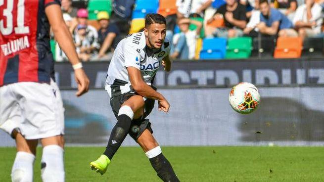 Rolando Mandragora con l'Udinese