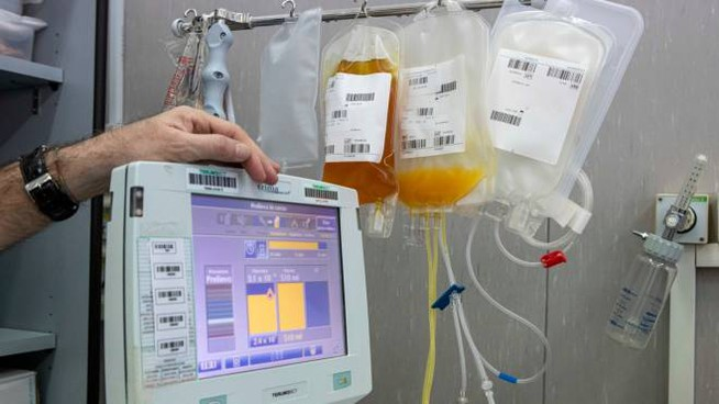 Il plasma iperimmune (Imagoeconomica)