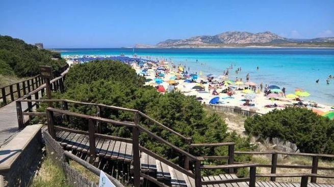 La spiaggia della Pelosa a Stintino, in Sardegna (Ansa)