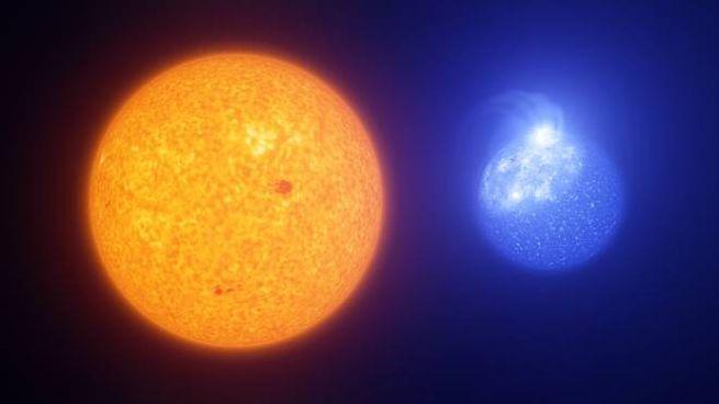 Le macchie solari e quelle delle stelle col morbillo (ESO/L.Calçada, INAF-Padua/S.Zaggia)