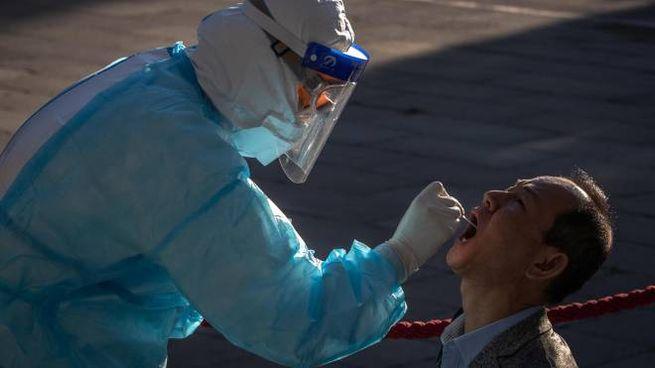 Un giornalista sottoposto a tampone per Coronavirus a Pechino (Ansa)