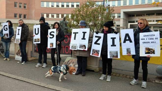 Una protesta degli animalisti