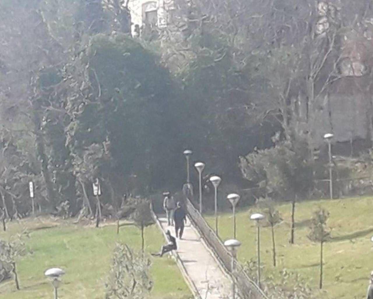 """Al Giardino Ancona bivacchi, uno scempio nel giardino della moriconi"""" - cronaca"""