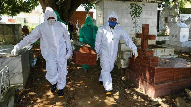 Coronavirus, allarme per contagi e morti in Brasile (Ansa)