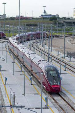 Un treno ad Alta Velocità Italo, a sinistra nel tondo Oliviero Baccelli dell'università Bocconi