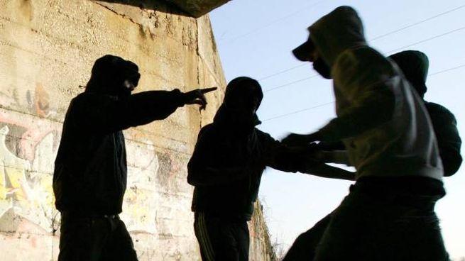La banda di violenti ragazzini avrebbe persino un nome: 'Mono Gang'