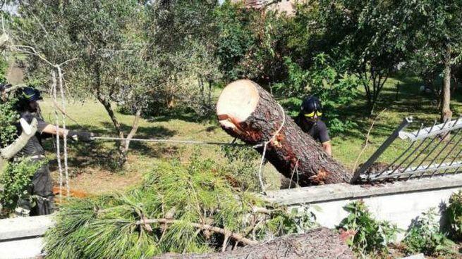 I danni provocati dalla tempesta abbattutasi nel Ferrarese (Ansa)
