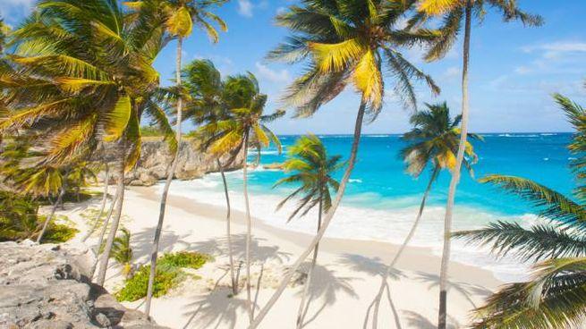 Ecco come Barbados punta ad attirare i professionisti che lavorano in remoto
