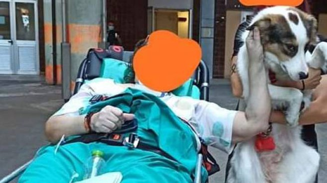 Ospedale Murri Covid free