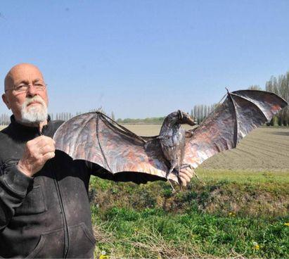 Nicola Zamboni e il pipistrello in rame