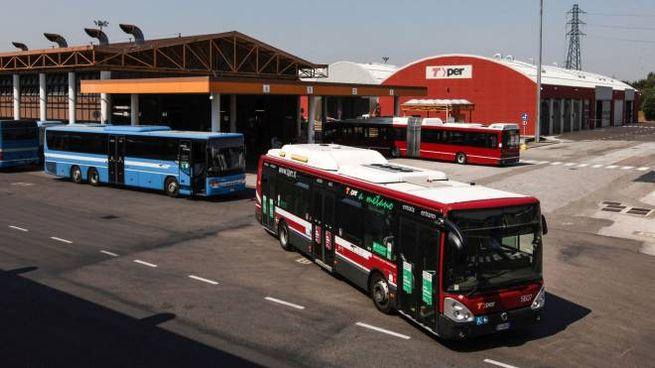 Gli autobus Tper