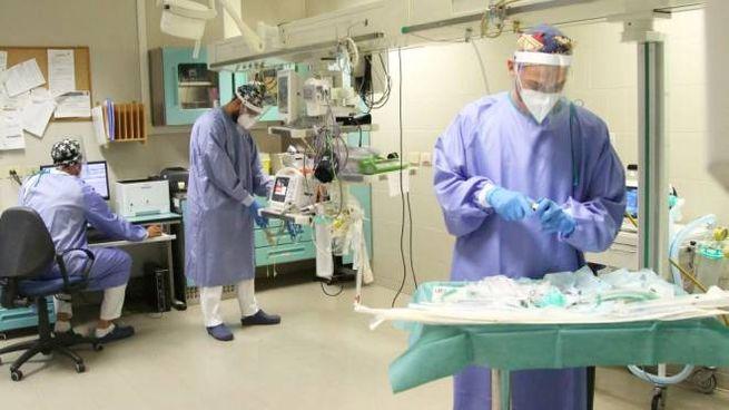 Coronavirus, il bollettino del 12 luglio in tempo reale (Foto Ravaglia)