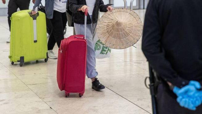 I trolley possono tornare nelle cappelliere dell'aereo (Ansa)