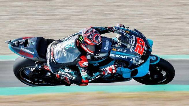 Fabio Quartararo è in pole position a Jerez (Ansa)