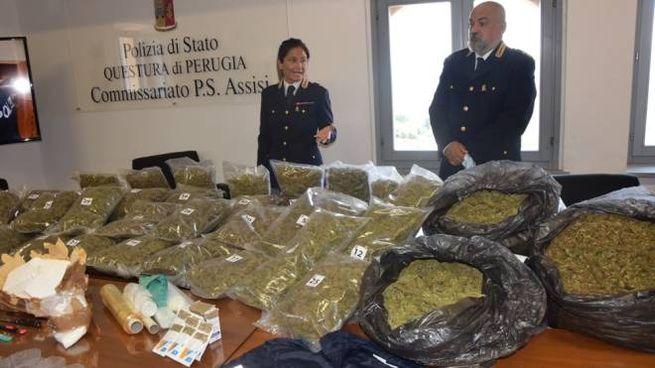 L'impressionante quantitativo di droga sequestrata