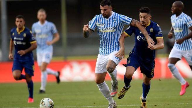 Verona-Spal, Petagna in azione