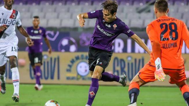 Fiorentina-Bologna (Fotoschicchi)