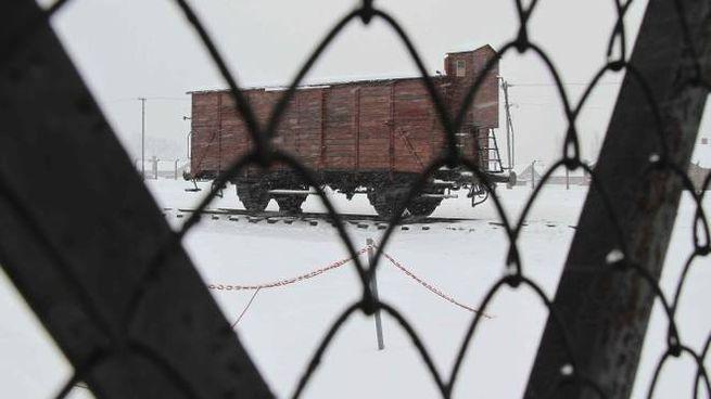 Shoah, il vagone di un treno nel campo di Birkenau (Newepress)