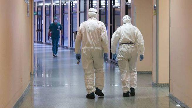 Coronavirus, bollettino di oggi 1 agosto: 15 casi a Bologna (Fotolive)