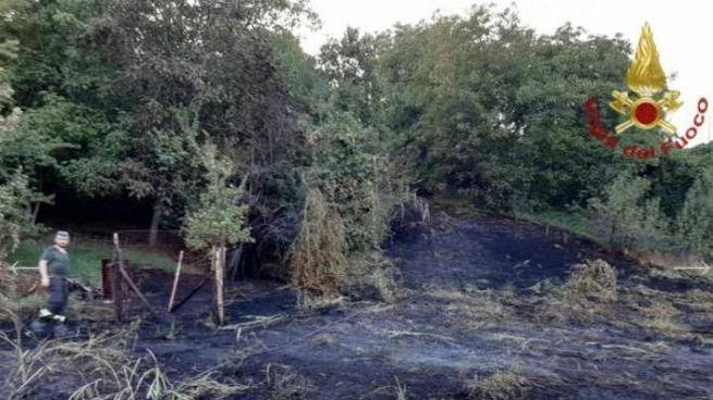 L'incendio a Forche di Puianello