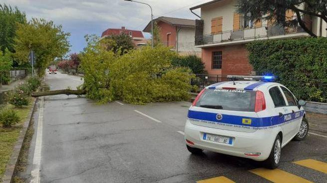 I danni del maltempo a Modena