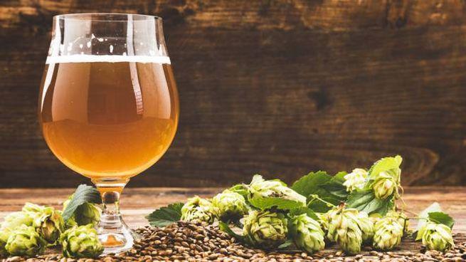 Una birra per festeggiare