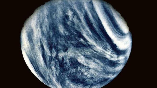 Il pianeta Venere in una foto rilasciata dalla Nasa qualche anno fa (Archivio Ansa)