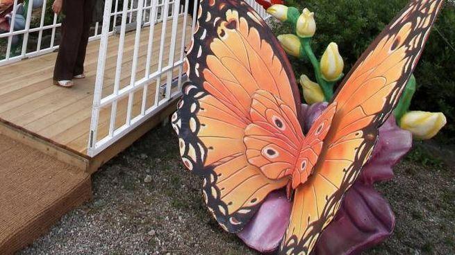Negli anni molte sono state le iniziative a Firenze legate allo studio degli insetti