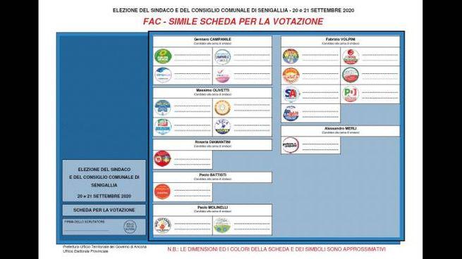 Elezione Senigallia 2020, il fac simile della scheda elettorale