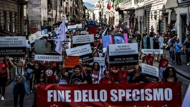 Firenze, la marcia del 2019