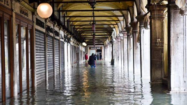 Meteo, l'acqua alta a Venezia nel novembre 2019 (Alive)