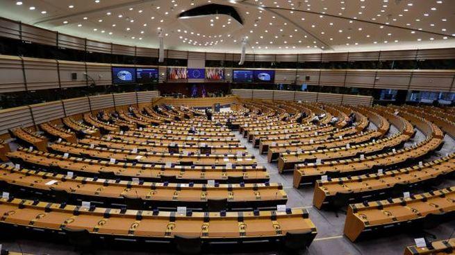 Parlamento Europeo (Ansa)
