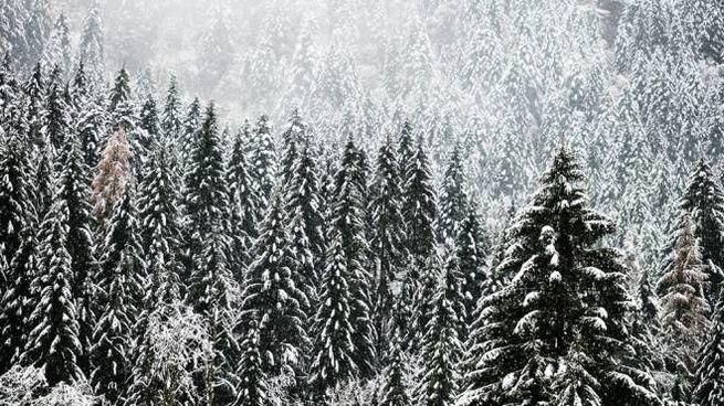 Previsioni meteo, domenica freddo e neve a bassa quota