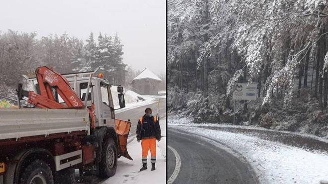 La neve caduta a Frossinoro
