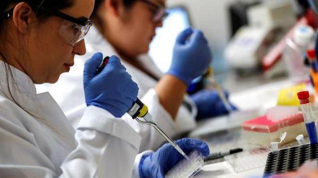 Coronavirus, scienziati al lavoro per la ricerca del vaccino (Ansa)
