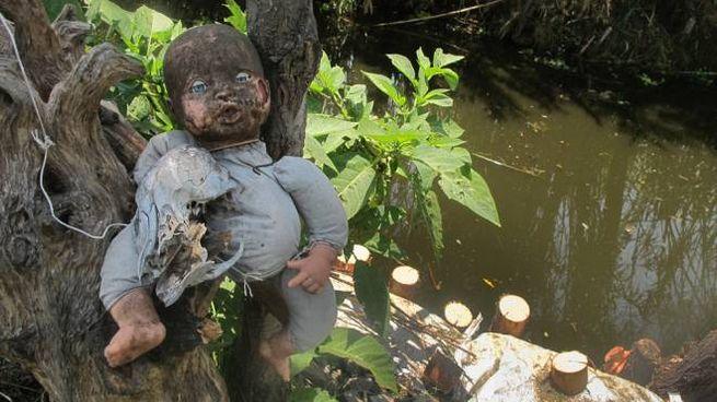 Una delle tristi e inquietanti bambole dell'Isla de las Munecas, in Messico