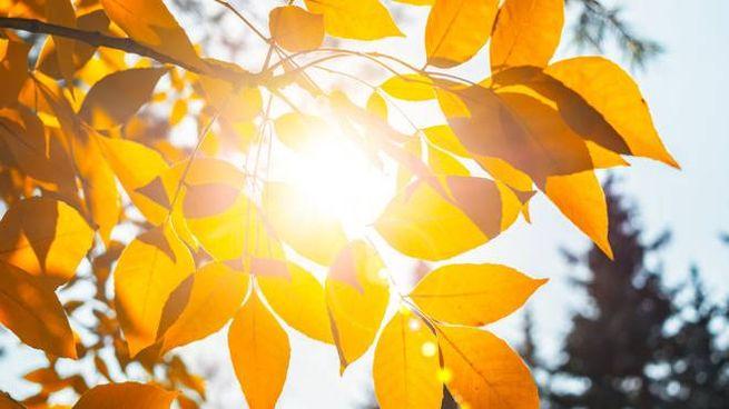 Previsioni meteo domenica 8 novembre