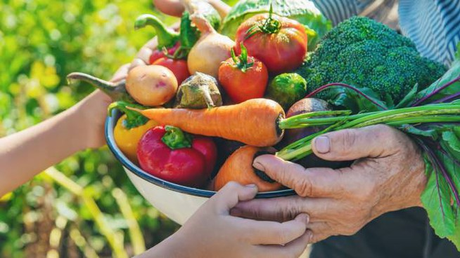 Quanto incide il sistema alimentare mondiale sul riscaldamento globale