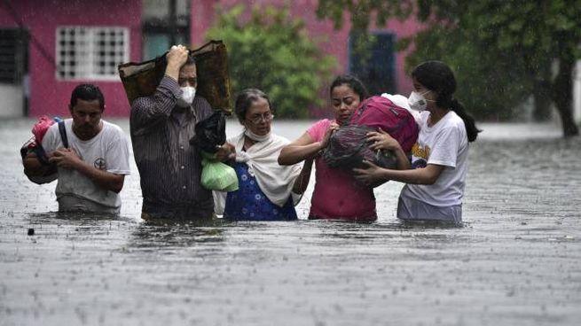 Inondazioni in Messico, e in strada arrivano i coccodrilli (Ansa)