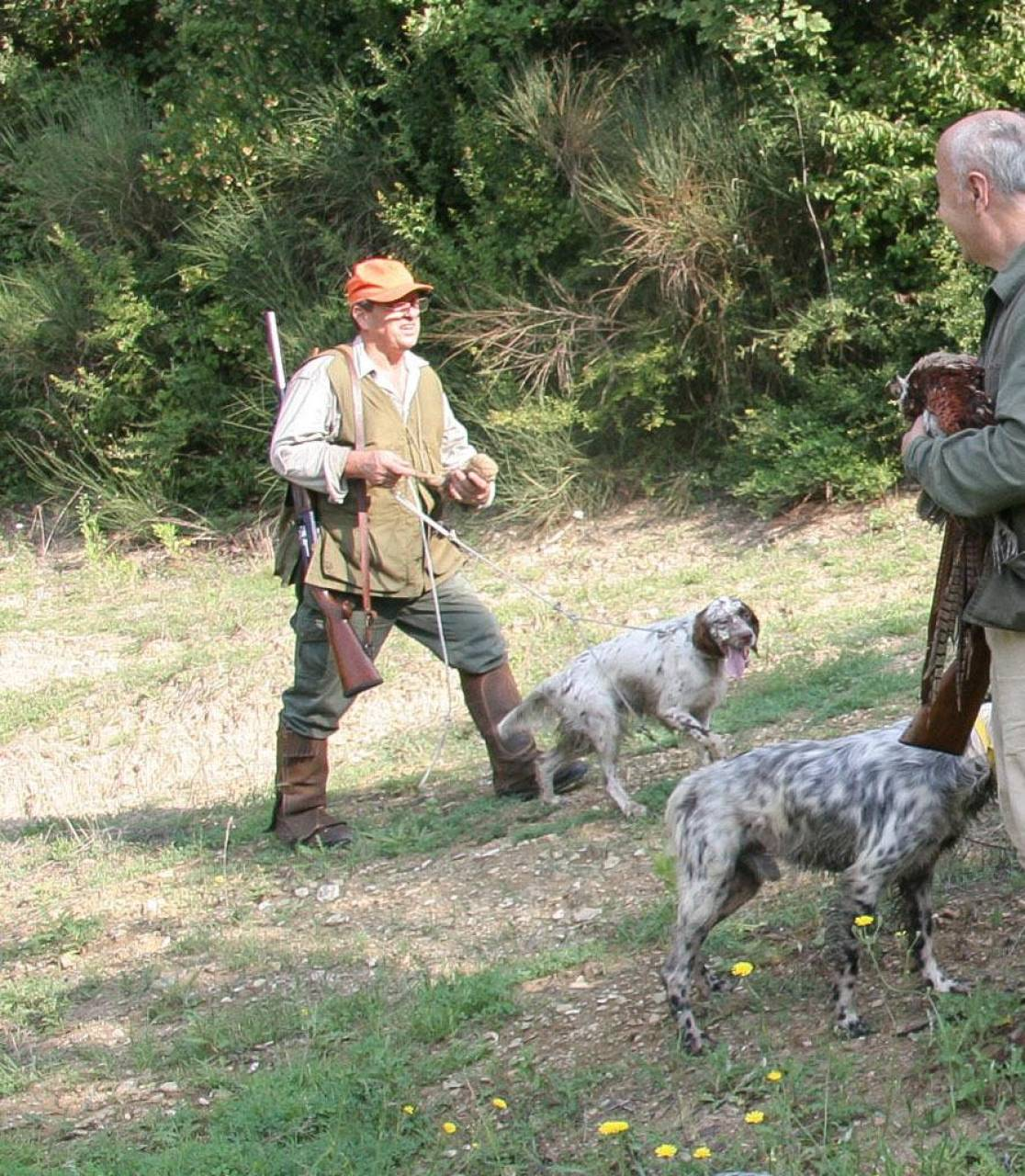 Cacciatori e agricoltori chiedono di riattivare la caccia di selezione per contenere gli ungulati